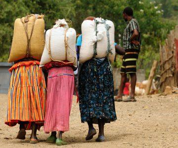 Stam uit de Omo vallei Ethiopië   Groepsreizen